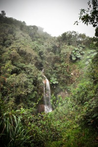cascada-manizales-colombia