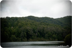 lago-pirihueico-chile
