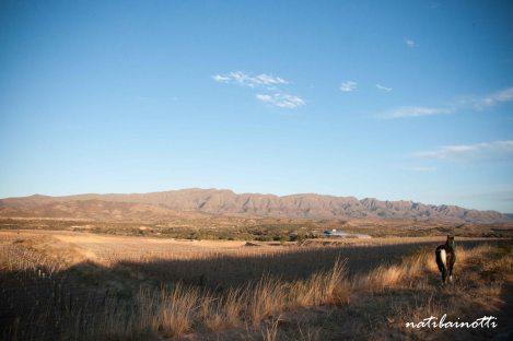Vistas del valle.
