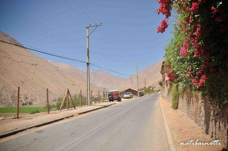 En la ruta hacia el Fundo Los Nichos.