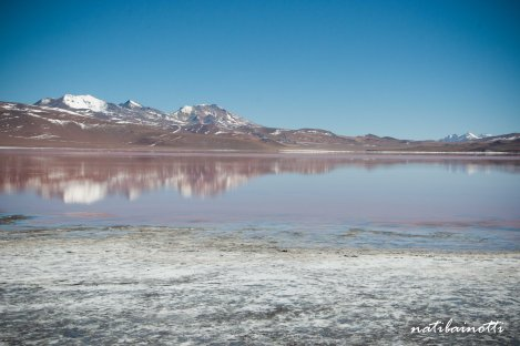 geiseres-uyuni-bolivia-mividaenunamochila (12)