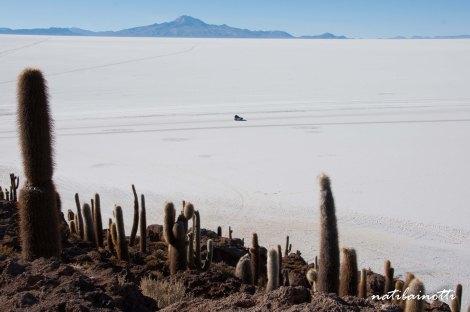 salar-uyuni-bolivia-mividaenunamochila (22)