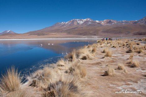 uyuni-lagunas-bolivia-mividanunamochila (10)