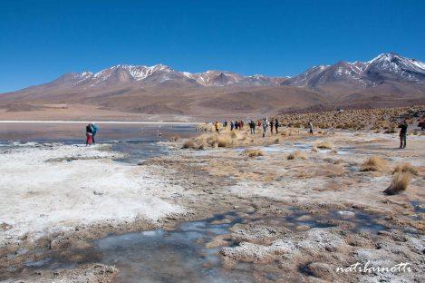 uyuni-lagunas-bolivia-mividanunamochila (12)