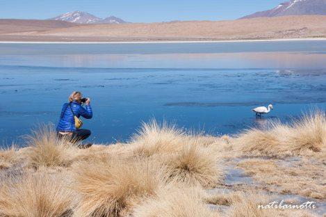 uyuni-lagunas-bolivia-mividanunamochila (14)