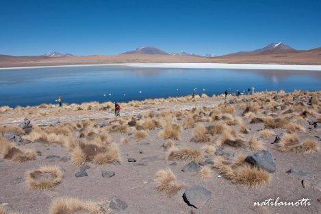 uyuni-lagunas-bolivia-mividanunamochila (16)