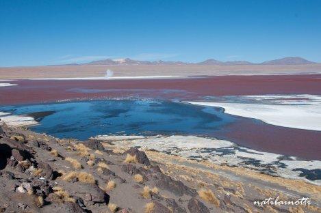 uyuni-lagunas-bolivia-mividanunamochila (41)