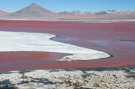 uyuni-lagunas-bolivia-mividanunamochila (43)