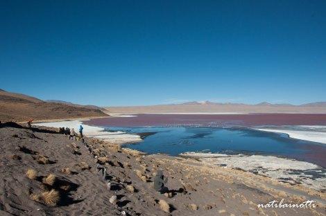 uyuni-lagunas-bolivia-mividanunamochila (44)
