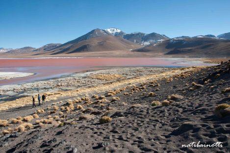 uyuni-lagunas-bolivia-mividanunamochila (45)