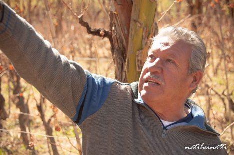 Don Jaime, explicándonos sobre sus viñedos