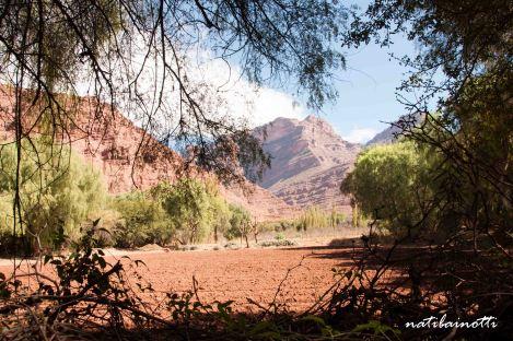 valle-cinti-bolivia (17)