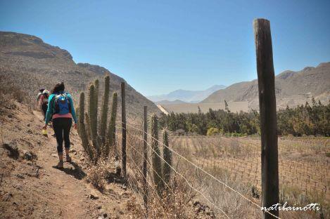 Empezando el trekking
