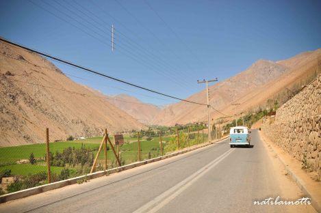valle-del-elqui-chile (11)