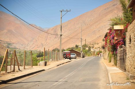 valle-del-elqui-chile (13)