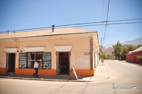 valle-del-elqui-chile (22)