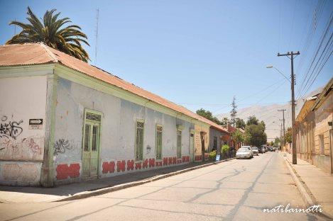 valle-del-elqui-chile (24)