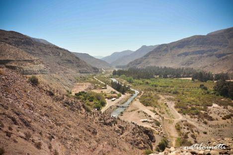 valle-del-elqui-chile (4)
