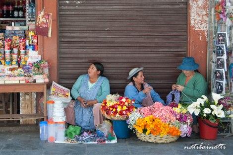 mercados-tarija-bolivia-mividaenunamochila-nati-bainotti