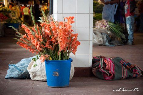 detalles-mercados-sucre-bolivia-mividaenunamochila-nati-bainotti