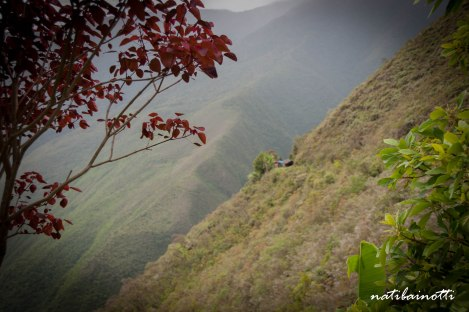 trekking-choro-bolivia-nati-bainotti-15