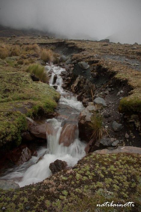 trekking-choro-bolivia-nati-bainotti (17)