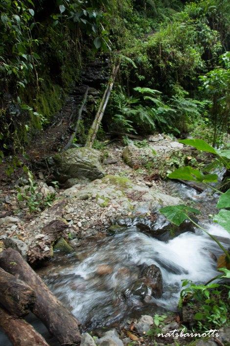 trekking-choro-bolivia-nati-bainotti-18