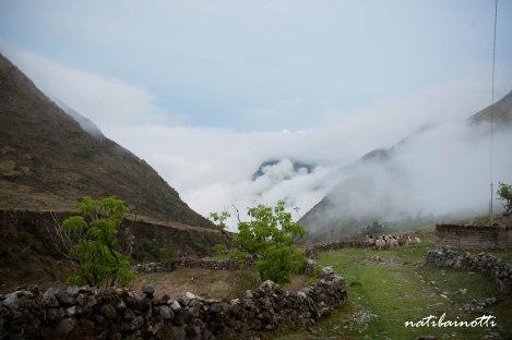 trekking-choro-bolivia-nati-bainotti (26)