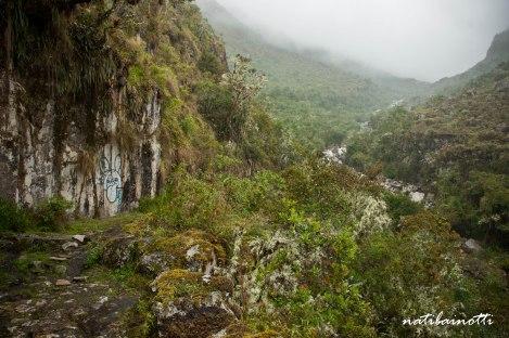 trekking-choro-bolivia-nati-bainotti (32)