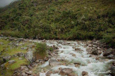 trekking-choro-bolivia-nati-bainotti (35)