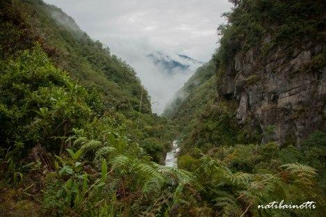 trekking-choro-bolivia-nati-bainotti (38)