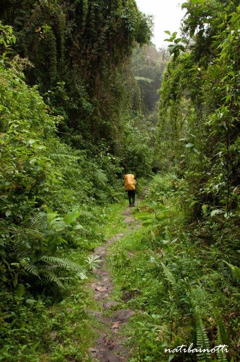 trekking-choro-bolivia-nati-bainotti (41)