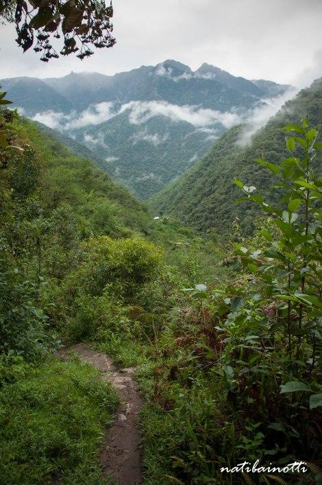 trekking-choro-bolivia-nati-bainotti (46)