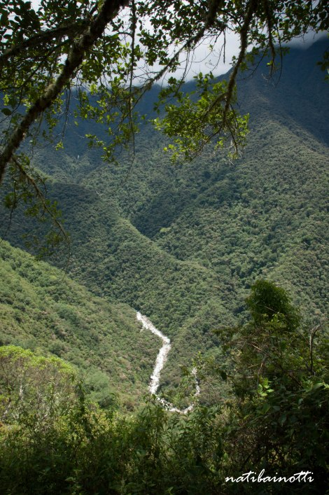 trekking-choro-bolivia-nati-bainotti-5