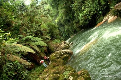 podocarpus-loja-ecuador (12)