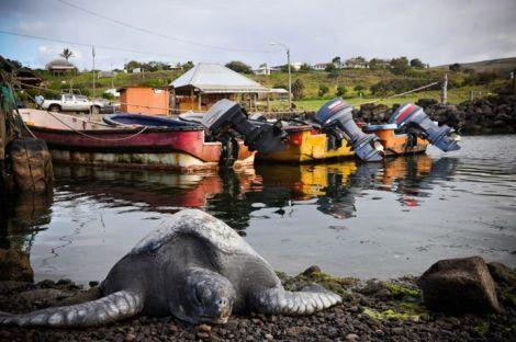 isla-de-pascua-chile (9)